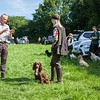Welsh and English Counties Spaniel Club Training Day Poolgreen Gundogs-26