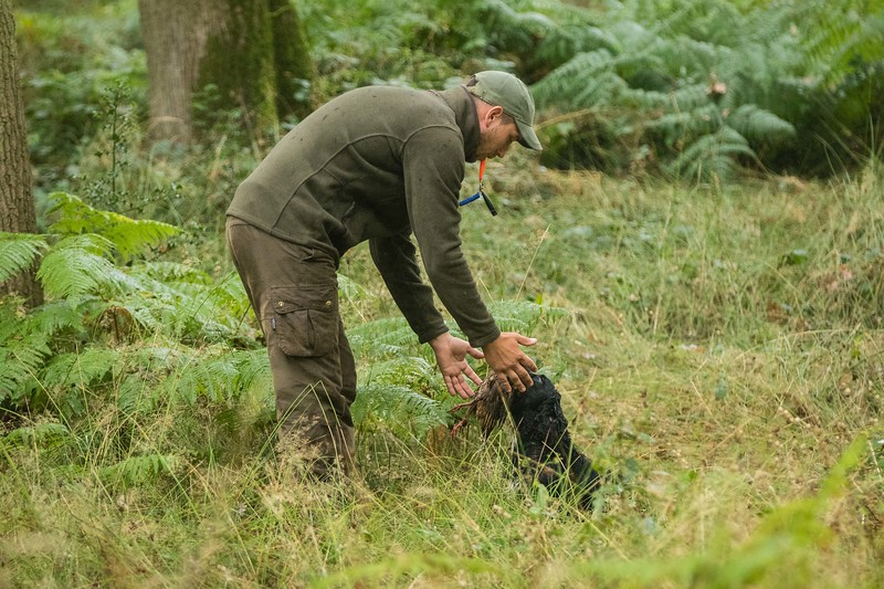 WGDS Cold Game Training Day Aug 12th 7D-191