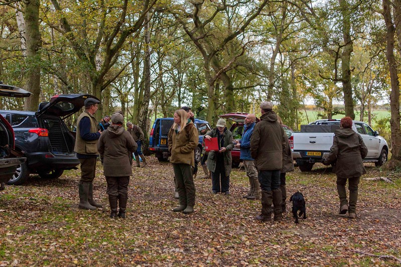 Minor Breeds Simulated Field Trial Day November 5D-1