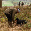 Minor Breeds Simulated Field Trial Day November 5D-11