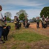 Midlands Flatcoated Retriever Working Test Curborough May-5