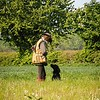 Midlands Flatcoated Retriever Working Test Curborough May-148
