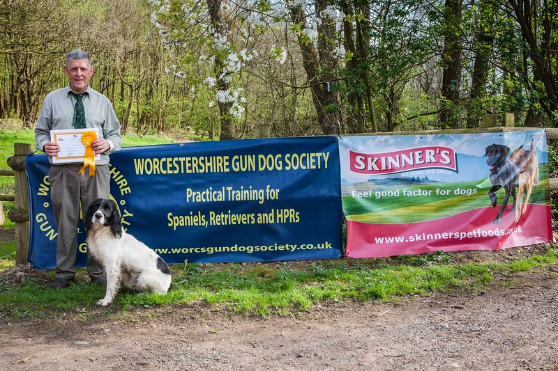 WGDS Working Test Brockhill Spaniels April 2018-319