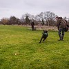 Clicker Gundog Training Sunday 25th November-18