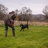 Clicker Gundog Training Sunday 25th November-16