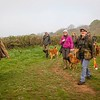 Wedgnock Retriever Training Day Northants Day 2 5D (2 of 17)