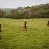 Wedgnock Retriever Training Day Northants Day 1 5D (6 of 80)