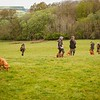 Wedgnock Retriever Training Day Northants Day 1 5D (17 of 80)