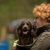 WGDS Spaniel Training Day with Steve Bates 7D-2