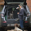 WGDS Spaniel Training Long Itchington 7D-1