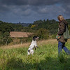 WGDS Spaniel Training Long Itchington 5D-8