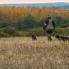 Hampshire Gundog Society Open Cocker Spaniel FT Kenilworth-267