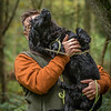 Hampshire Gundog Society Open Cocker Spaniel FT Kenilworth-212