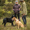 Cotswold Gundogs Peg dog Training Day-45