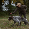 Cotswold Gundogs Peg dog Training Day-69
