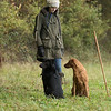 Cotswold Gundogs Peg dog Training Day-80