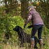 Cotswold Gundogs Peg dog Training Day-37