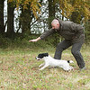 Cotswold Gundogs Peg dog Training Day-72