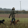 Cotswold Gundogs Peg dog Training Day-82