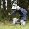 Cotswold Gundogs Peg dog Training Day-111