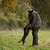 Cotswold Gundogs Peg dog Training Day-30