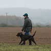 Cotswold Gundogs Peg dog Training Day-83