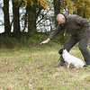 Cotswold Gundogs Peg dog Training Day-71