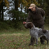 Cotswold Gundogs Peg dog Training Day-67