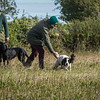 Cotswold Gundog Hunting Skills Training Day 7D-51