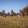 Cotswold Gundog Hunting Skills Training Day 5D-6