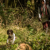 Cotswold Gundog Hunting Skills Training Day 7D-160