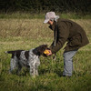 Cotswold Gundog Hunting Skills Training Day 7D-86