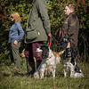 Cotswold Gundog Hunting Skills Training Day 7D-8