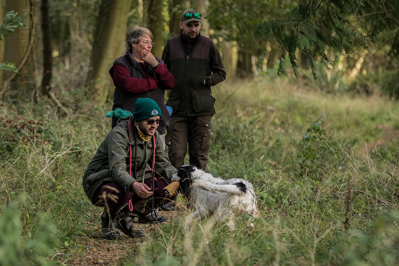 Cotswold Gundog Hunting Skills Training Day 7D-221
