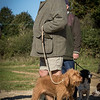 Cotswold Gundog Hunting Skills Training Day 7D-2