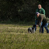 Cotswold Gundog Hunting Skills Training Day 7D-83