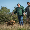 Cotswold Gundog Hunting Skills Training Day 7D-38
