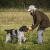 Cotswold Gundog Hunting Skills Training Day 7D-87