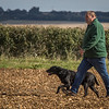 Cotswold Gundog Hunting Skills Training Day 7D-134