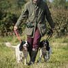 Cotswold Gundog Hunting Skills Training Day 7D-62