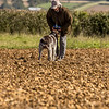 Cotswold Gundog Hunting Skills Training Day 7D-111