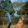 Cotswold Gundog Hunting Skills Training Day 7D-15