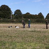 Cotswold Gundog Hunting Skills Training Day 5D-11