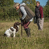 Cotswold Gundog Hunting Skills Training Day 7D-76