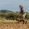 Cotswold Gundog Hunting Skills Training Day 7D-115