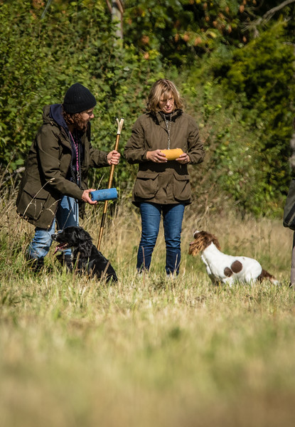 Cotswold Gundog Hunting Skills Training Day 7D-141