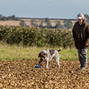 Cotswold Gundog Hunting Skills Training Day 7D-108