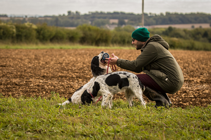 Cotswold Gundog Hunting Skills Training Day 7D-275