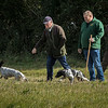 Cotswold Gundog Hunting Skills Training Day 7D-82