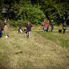 Cotswold Gundog Hunting Skills Training Day 7D-137